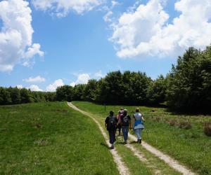 Escursionisti (N Agostini).JPG