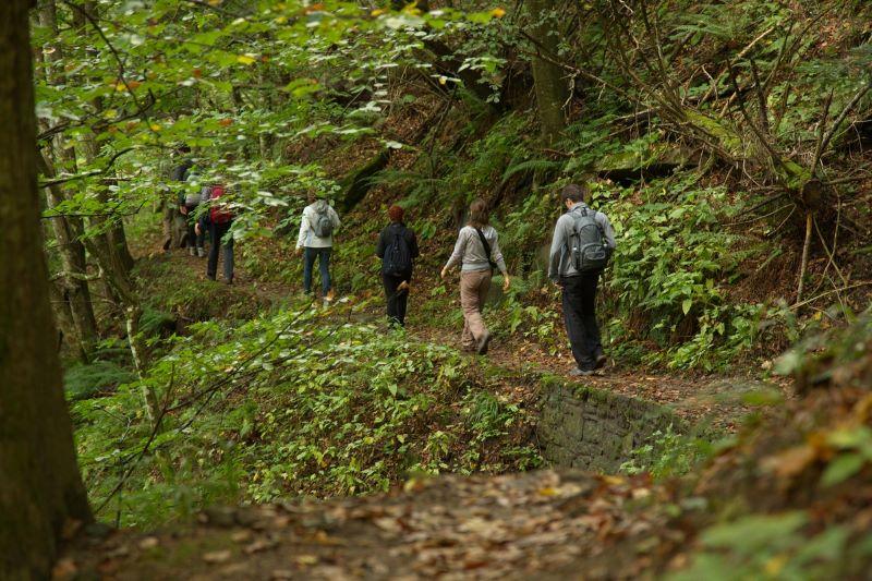 Escursioni guidate | Parco Nazionale Foreste Casentinesi