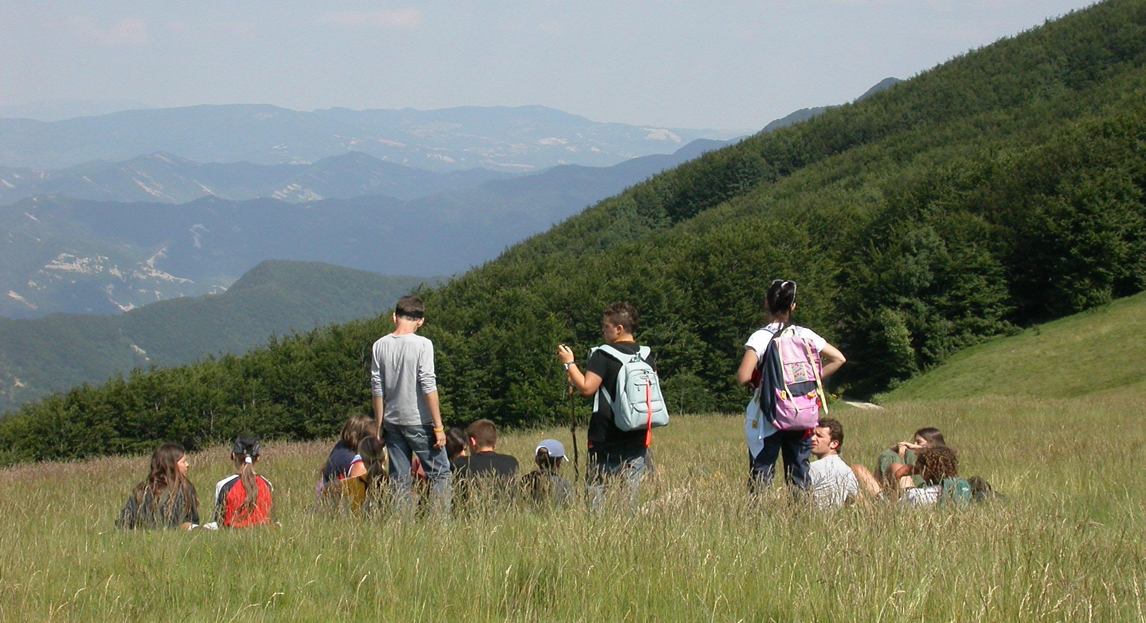 Campi estivi e altre proposte | Parco Nazionale Foreste ...