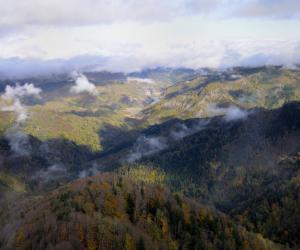Paesaggio (F. Liverani)
