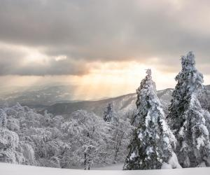 Inverno Parco Foreste Casentinesi