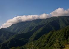 Foreste Casentinesi (G. Giacomini)