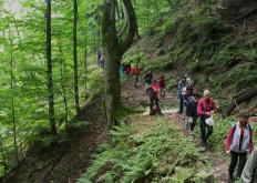 trekking parco